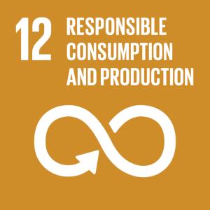 SDG 12 Responsible Consumption & Production