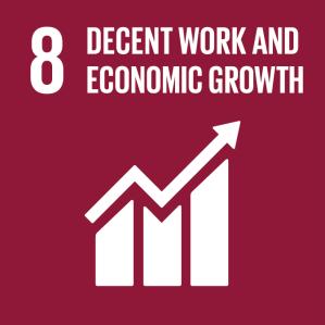 SDG 8 Decent Work & Economic Growth